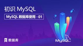 初识MySQL